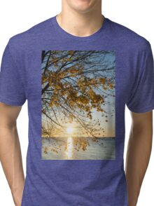 Brilliant Yellows and Blues - the Golden Maple on the Lake Shore Tri-blend T-Shirt