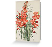 Vintage blue art - Charles Demuth - Red Gladioli Greeting Card