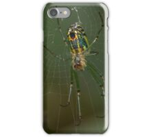 Said the Spider to the Fly iPhone Case/Skin
