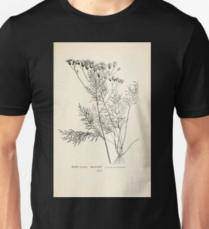 Southern wild flowers and trees together with shrubs vines Alice Lounsberry 1901 175 Ragwort Unisex T-Shirt