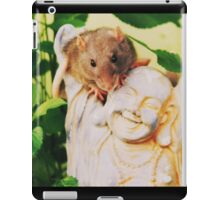 Loli and Budda iPad Case/Skin