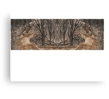 Mirror landscape Canvas Print