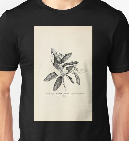 Southern wild flowers and trees together with shrubs vines Alice Lounsberry 1901 093 Alabama Croton Unisex T-Shirt