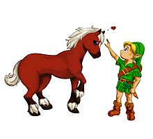 Young Link and Baby Epona Photographic Print