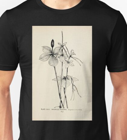 Southern wild flowers and trees together with shrubs vines Alice Lounsberry 1901 027 Whorled Pogonia Unisex T-Shirt