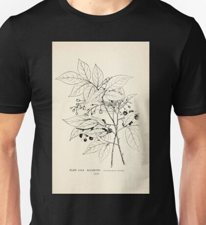 Southern wild flowers and trees together with shrubs vines Alice Lounsberry 1901 127 Buckberry Unisex T-Shirt