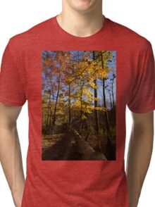 Of Fall and Fallen Giants - Autumn Forest in the Sunshine Tri-blend T-Shirt