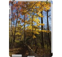 Of Fall and Fallen Giants - Autumn Forest in the Sunshine iPad Case/Skin