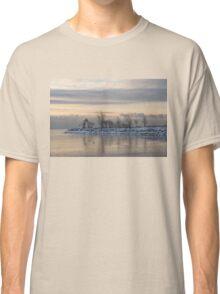 Two Swans, Sleeping - Serene Winter Lake Scene Classic T-Shirt