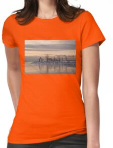 Two Swans, Sleeping - Serene Winter Lake Scene Womens Fitted T-Shirt