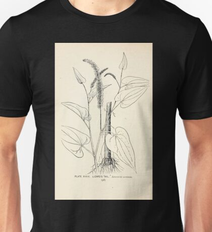Southern wild flowers and trees together with shrubs vines Alice Lounsberry 1901 034 Lizard's Tail Unisex T-Shirt