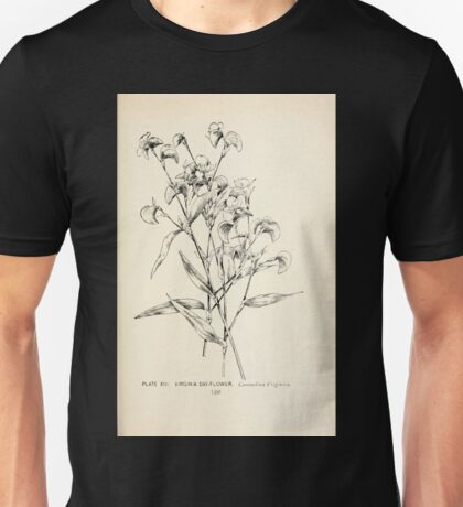 Southern wild flowers and trees together with shrubs vines Alice Lounsberry 1901 014 Virginia Day Flower Unisex T-Shirt