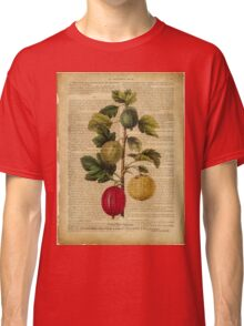 Botanical print, on old book page - gooseberry Classic T-Shirt
