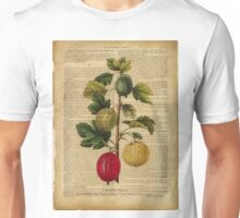 Botanical print, on old book page - gooseberry Unisex T-Shirt