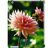 As Nature Stands Still iPad Case/Skin