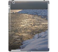 Lily Pad Ice Shines in the Silver Storm Light  iPad Case/Skin