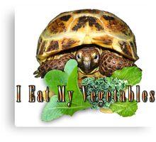 Tortoise - I Eat My Vegetables Canvas Print