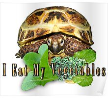 Tortoise - I Eat My Vegetables Poster