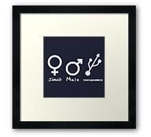 Female, Male and Programmer  Framed Print