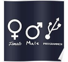 Female, Male and Programmer  Poster