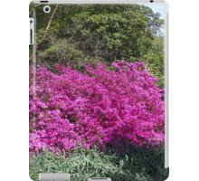 Azalea Time iPad Case/Skin