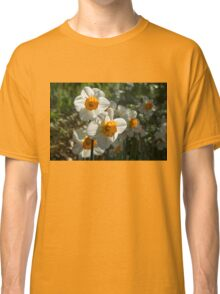 Sunny Side Up - Daffodils Blooming in a Fabulous Spring Garden Classic T-Shirt