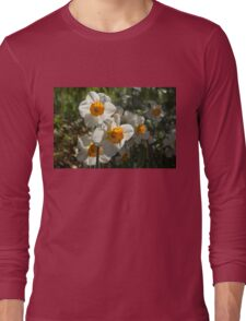 Sunny Side Up - Daffodils Blooming in a Fabulous Spring Garden Long Sleeve T-Shirt