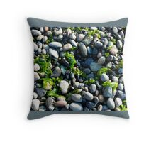 Seaweed and Rocks, Lopez Island Throw Pillow