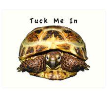 Tortoise - Tuck me in Art Print