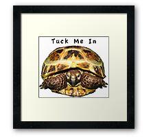 Tortoise - Tuck me in Framed Print