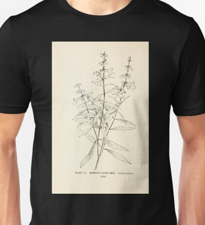 Southern wild flowers and trees together with shrubs vines Alice Lounsberry 1901 149 Narrow Leaved Sage Unisex T-Shirt