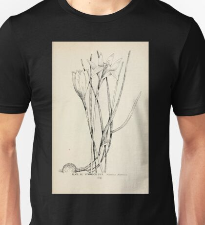 Southern wild flowers and trees together with shrubs vines Alice Lounsberry 1901 020 Atamasco Lily Unisex T-Shirt