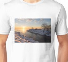 Brilliant, Bright and Cold - a Winter Morning on the Lake Shore Unisex T-Shirt