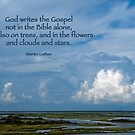 God writes the Gospel . . . by Bonnie T.  Barry