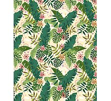 Tropical Pattern Photographic Print