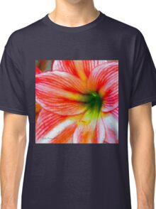 Candy-Cane Striped Amaryllis Classic T-Shirt