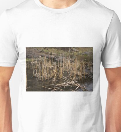 Spring At The Beaver Pond Unisex T-Shirt