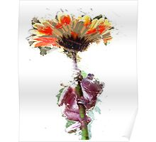 Frog with Flower Umbrella Poster