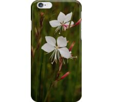 Southern Beeblossom iPhone Case/Skin