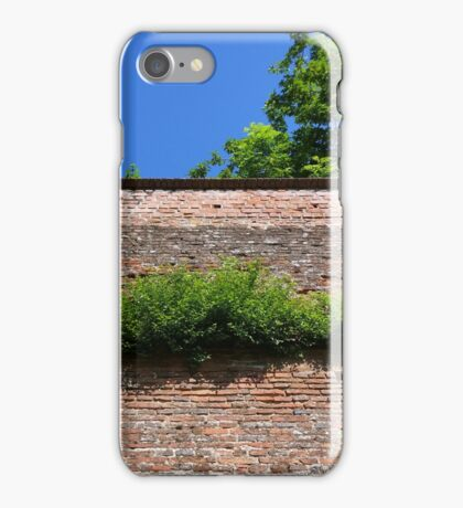 green on the old fortress wall iPhone Case/Skin