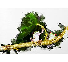 Two Frogs Under a Leaf Photographic Print