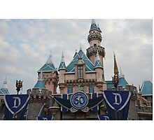 60th Anniversary Castle Up Close Photographic Print