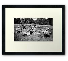 Working in the rice fields  Framed Print
