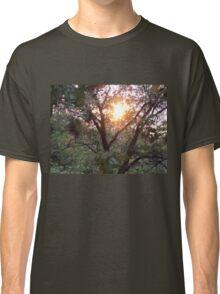Sunrise through the Trees Classic T-Shirt