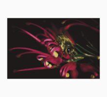 """""""Bee on Grevillea rosemarinifolia"""" - Stanthorpe - Qld Kids Tee"""
