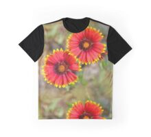 Indian Blanket Sundance Graphic T-Shirt