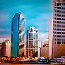 Brisbane From The River by wallarooimages