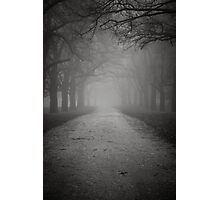 Towards The Light Photographic Print