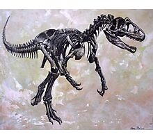 Allosaurus fragilis skeleton Photographic Print