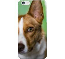 Skyler iPhone Case/Skin